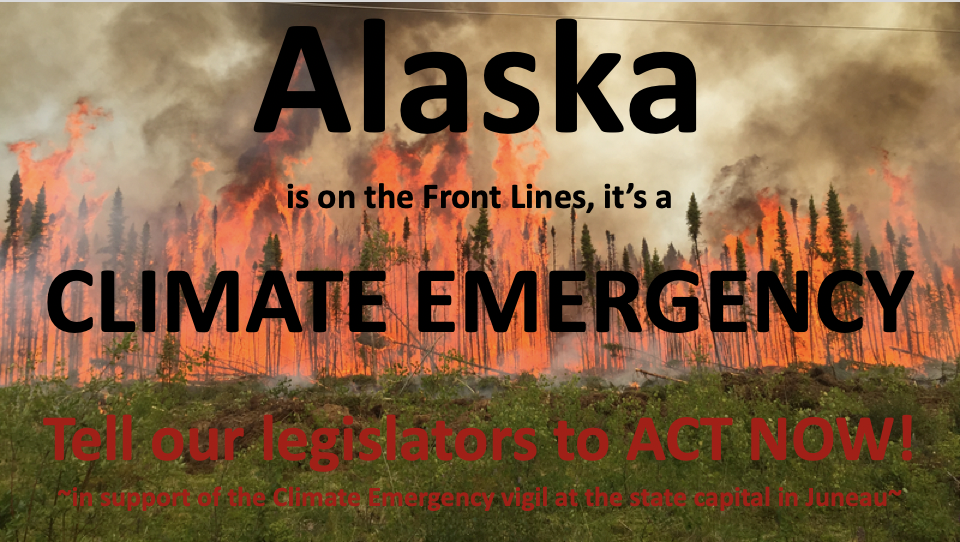 ALASKA CLIMATE CHANGE RESPONSE FUND ACT OF 2020